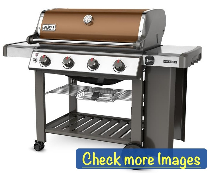 Best Propane Grills 2019: Buyer's Guide & Reviews | 10 Unbiased