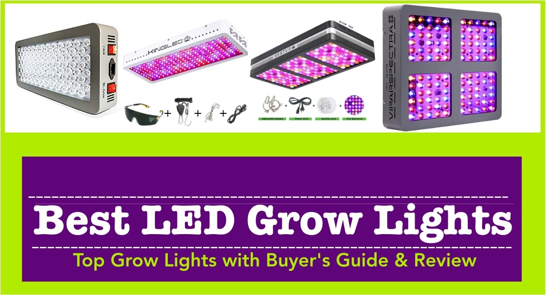 Best LED Grow Lights | 10 Unbiased