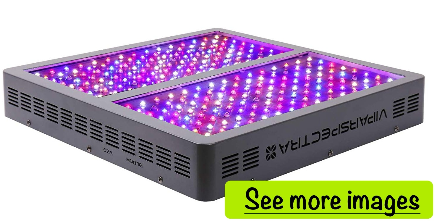 Best LED Grow Lights | 10 Unbiased